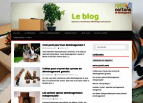 1001cartons-demenagement-leblog.com thumbnail