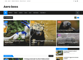 Aeroboss.co thumbnail