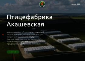 Akashevo.ru thumbnail