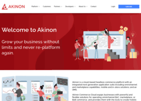 Akinon.net thumbnail