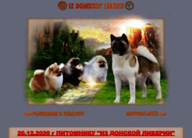 Akitadon.ru thumbnail
