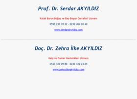Akyildiz.net thumbnail