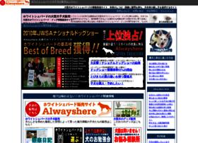 Alwayshere.jp thumbnail