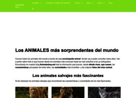 Animaleshoy.net thumbnail