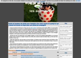 Annonces-animaux.eu thumbnail