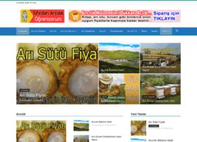 Aricilik.com.tr thumbnail