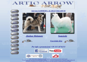 Articarrow.it thumbnail
