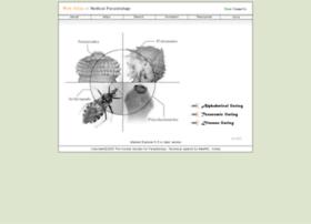 Atlas.or.kr thumbnail