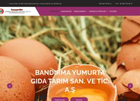Bandirmayumurta.com.tr thumbnail