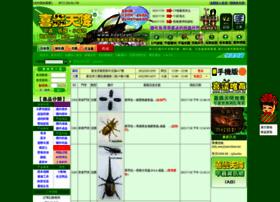 Beetles.com.tw thumbnail