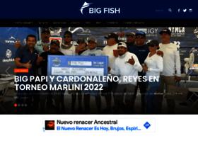 Bigfish.mx thumbnail