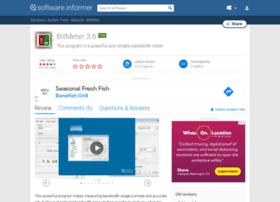 Bitmeter.software.informer.com thumbnail