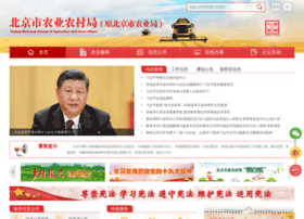 Bjny.gov.cn thumbnail