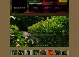 Blackmoor.co.uk thumbnail