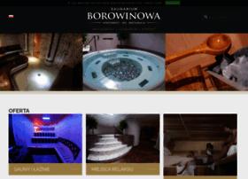 Borowinowa.pl thumbnail