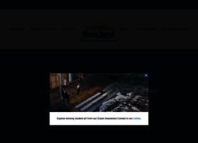 Bowseat.org thumbnail
