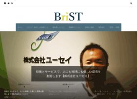 Brist-vision.jp thumbnail