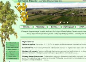 Brzeziny.info.pl thumbnail