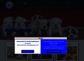 Bulldogclubofamerica.org thumbnail