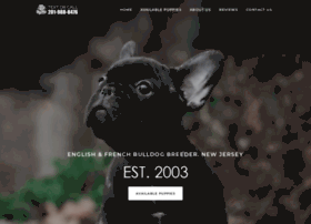 Bulldogsbay.com thumbnail