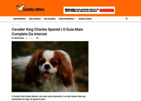 Cachorrosincriveis.com.br thumbnail