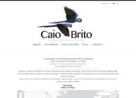 Caiobrito.com thumbnail