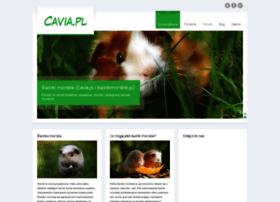 Cavia.pl thumbnail