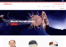 Celikkol.net thumbnail