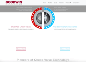 Checkvalves.co.uk thumbnail