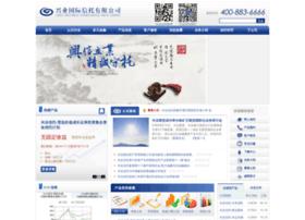 Ciit.com.cn thumbnail