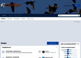 Clubedascalopsitas.com.br thumbnail