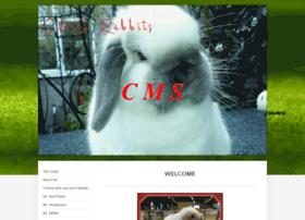 Cmsbunnies.co.uk thumbnail
