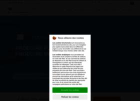 Cogivea.com thumbnail