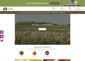Cueillettedecergy.fr thumbnail