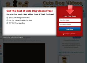 Cutedogvideos.tv thumbnail