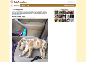 Cutepuppies.net thumbnail