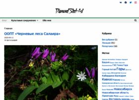 Diamondsteel.ru thumbnail