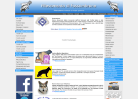 Difossombrone.it thumbnail