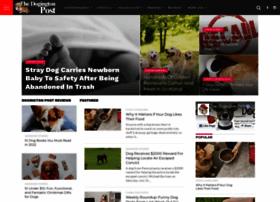 Dogchatforum.com thumbnail