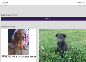 Dogquest.co.uk thumbnail