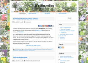 Dracaena-drachenbaum.de thumbnail