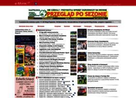 E-monki.pl thumbnail