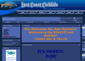 Eastcoastcichlids.com thumbnail