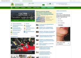 Ekburg.ru thumbnail