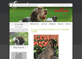Elevage-griffon-korthals.fr thumbnail