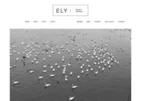 Elymanagement.cz thumbnail