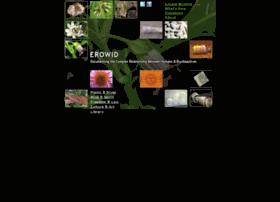 Erowid.net thumbnail