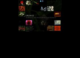Erowid.org thumbnail