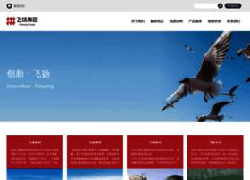 Feiyang.com.cn thumbnail