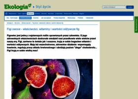 Figa.pl thumbnail